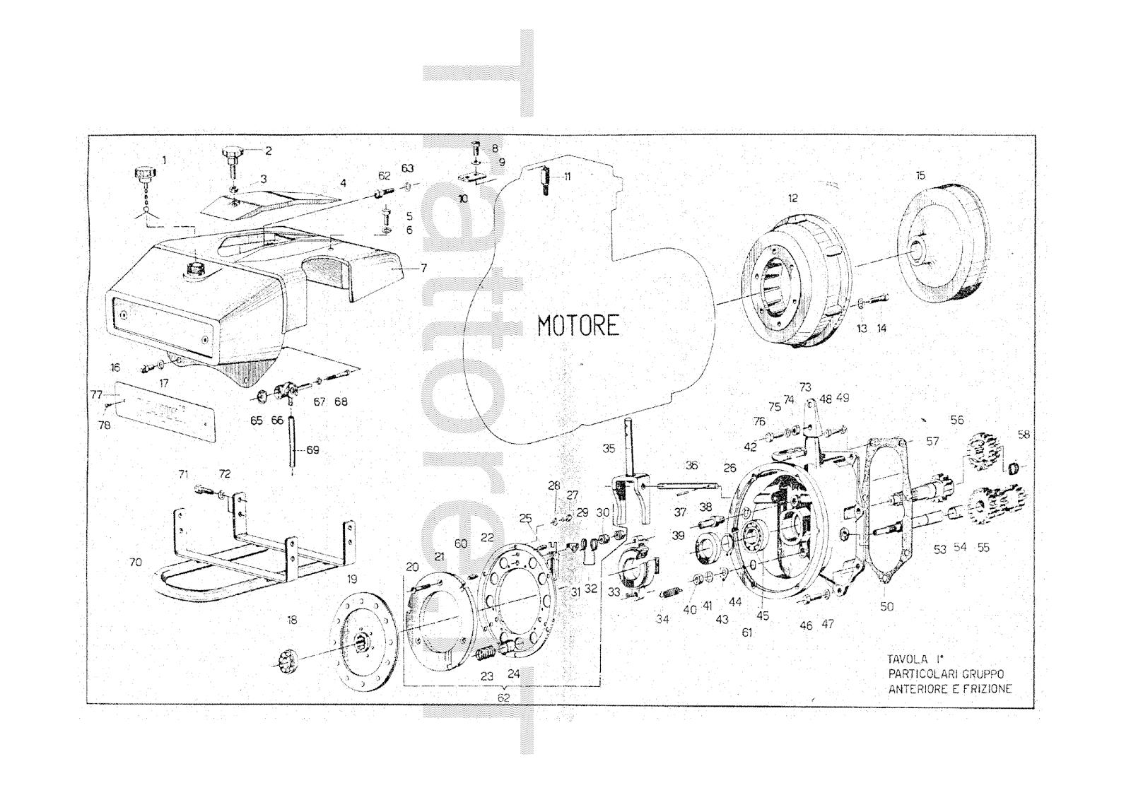 InfoTrattore.it: Motocoltivatore Pasquali 916 CV 13