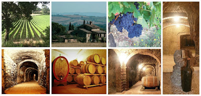 santa mustiola vini