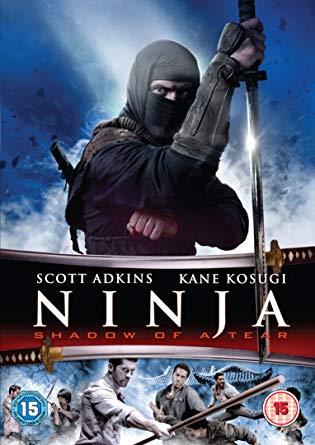 Ninja: Shadow of a Tear (2013) 720p HDRip Dual Audio [Hindi – English] – 800MB
