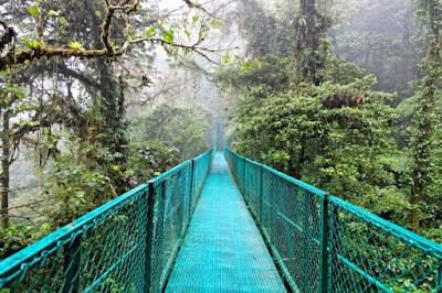 Pont métallique dans la réserve biologique de Monteverde .