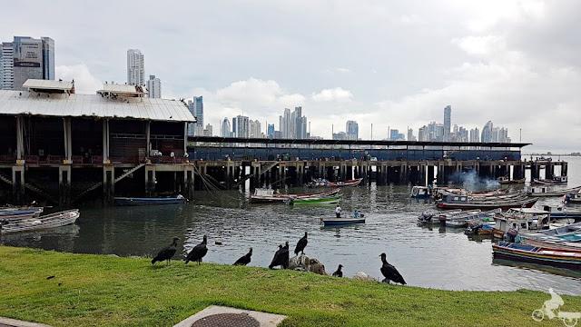 mercado marisco de panama