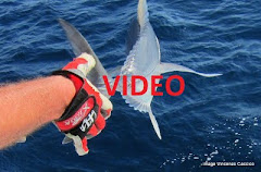 Maldive video 4