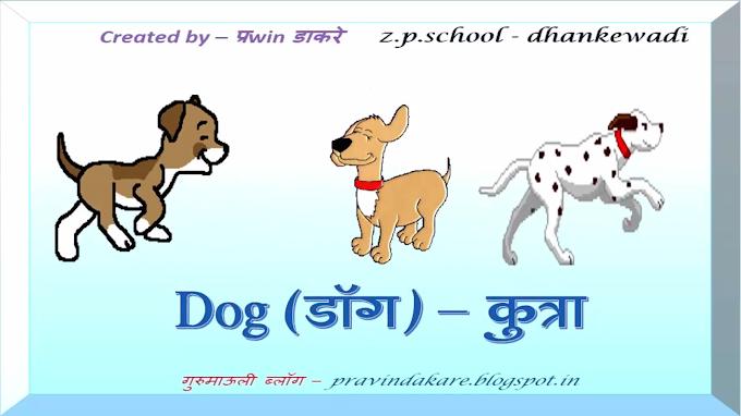 इंटरॅक्टिव्ह व्हिडिओ - पाळीव प्राणी ओळख with spelling & animation