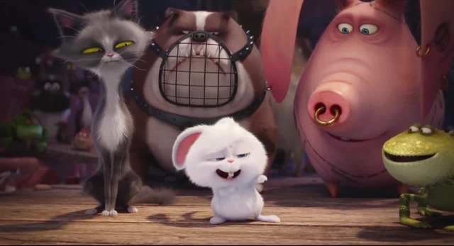 secret life of pets ringkasan