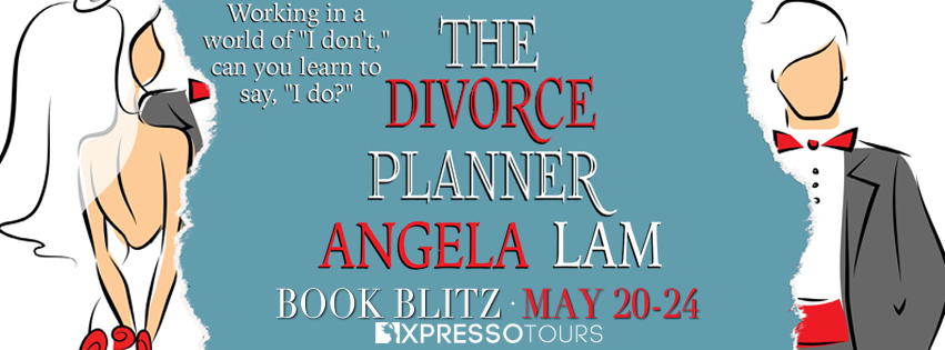 The Divorce Planner