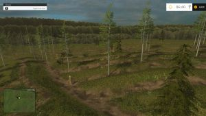 Only forest map