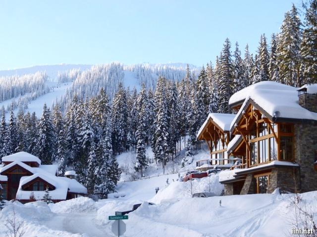 ảnh những ngôi nhà giữa rừng thông đầy tuyết