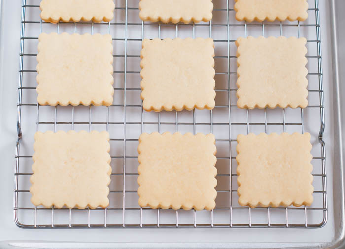 the BEST cut-out sugar cookie recipe for decorated cookies, from Bake at 350. | bakeat350.net
