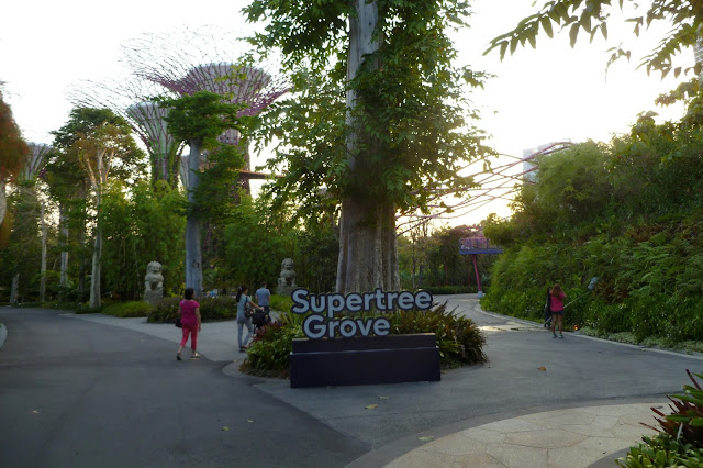 Supertree Grove w Gardens By The Bay