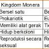 Perbedaan Monera dan Protista dalam Sistem Kingdom