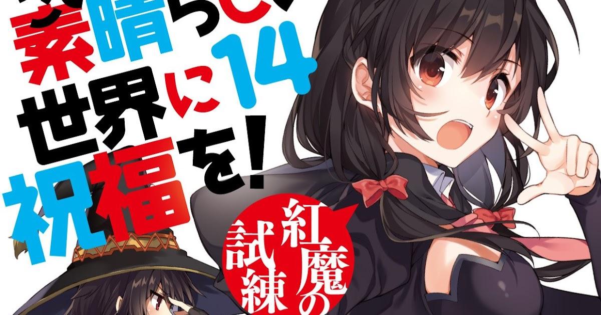 LN] Kono Subarashii Sekai ni Shukufuku wo! Volume 14