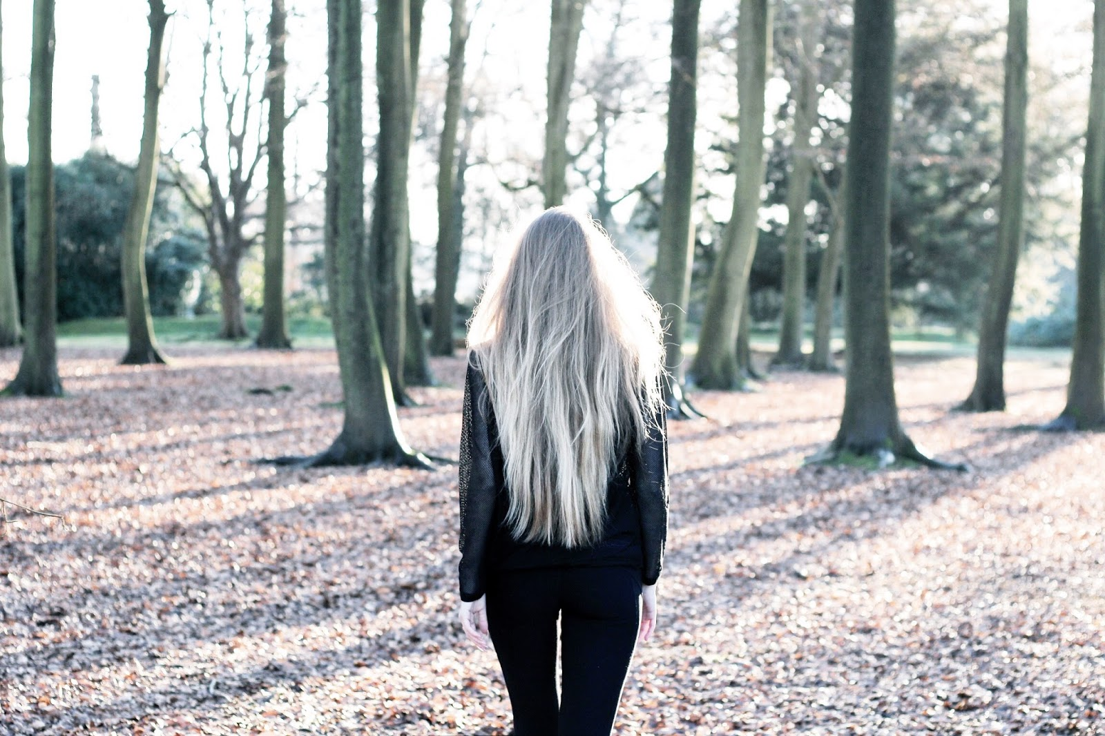 Long blonde hair from the back in the woods