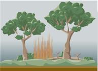 http://www3.gobiernodecanarias.org/medusa/contenidosdigitales/programasflash/Conocimiento/Ecologia/forestal.swf