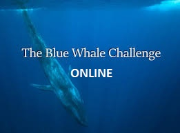 Download Blue Whale Suicide Game Apk Challenge Online
