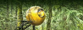 Αυτά τα ξύλινα στρογγυλά δεντρόσπιτα θα πραγματοποιήσουν όλα σας τα παιδικά όνειρα