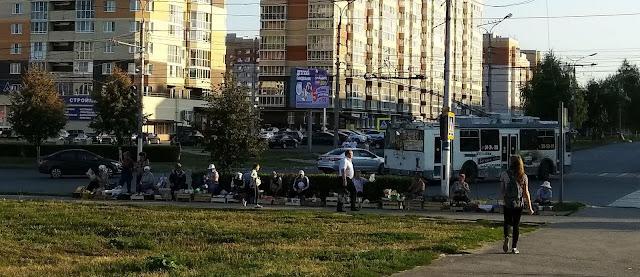 Дары осени в Юраково г.Новочебоксарск на www.zzblog.ru