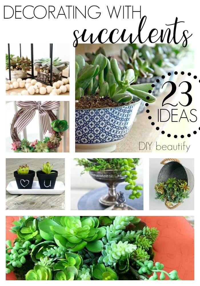 inspiring ways to decorate with succulents