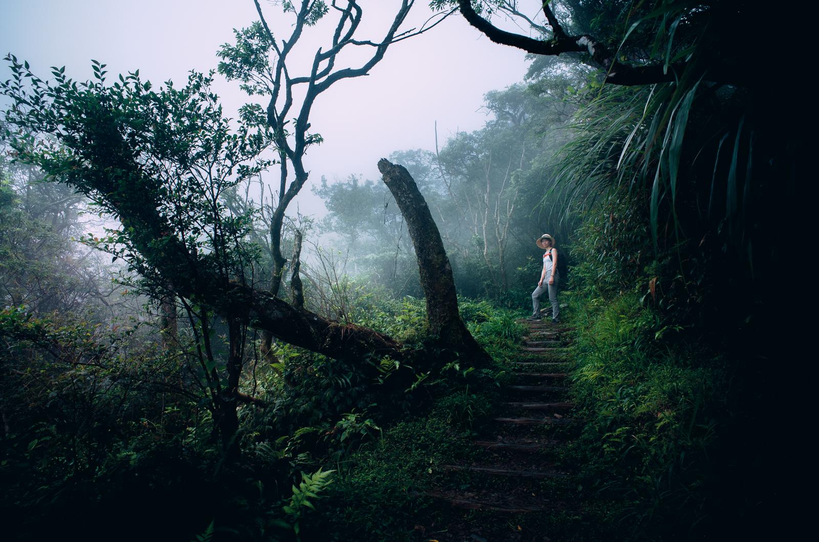 「Ricoh GR2」 宜蘭礁溪 / 聖母山莊國家步道