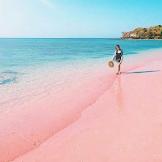 Harga Tiket Masuk dan Rute Menuju Pantai Pink Pulau Lombok Nusa Tenggara Timur