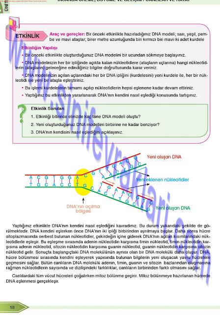8. Sınıf Fen Bilimleri Öğün Yayınları Ders Kitabı Cevapları Sayfa 18