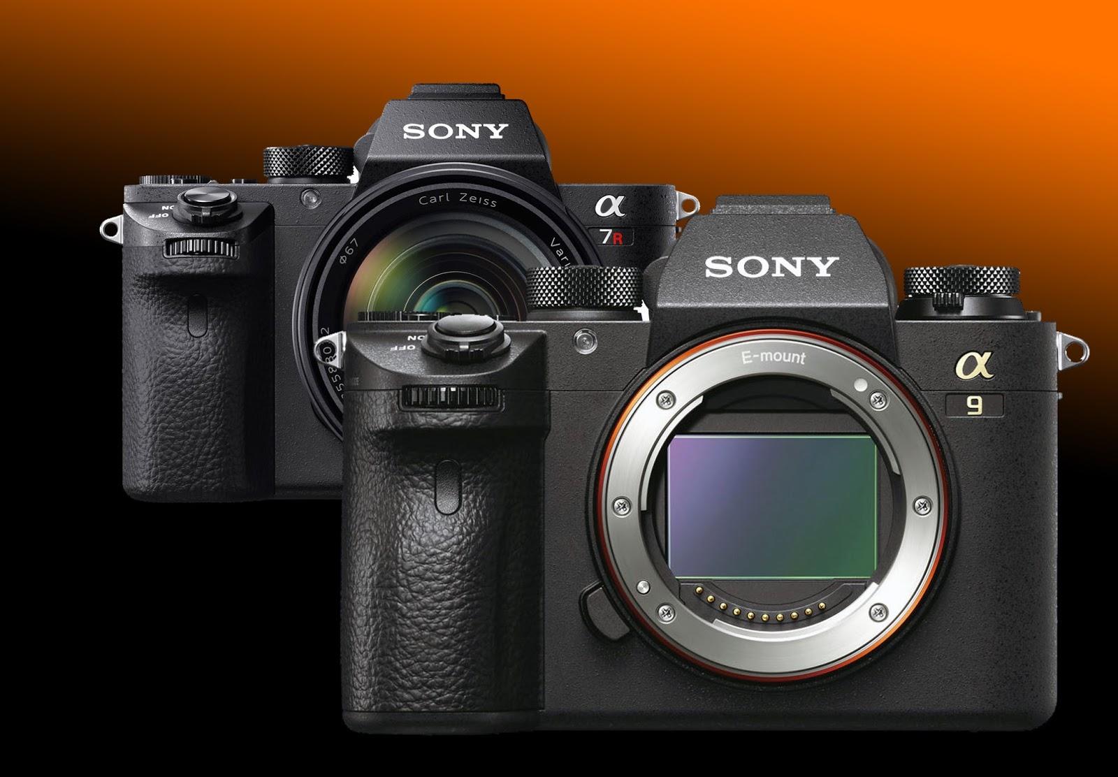 Сравнение Sony A9 и Sony A7R II