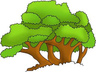 gambar pepohonan