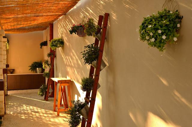 olio lucano-Olive di Basilicata_ tetraktis_Pitagpra_ Metaponto_ Bernalda