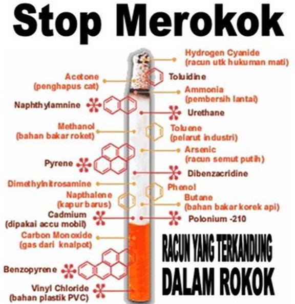 Artikel Bahaya Merokok Bagi Kesehatan Remaja Dodi Rulianda S Blog
