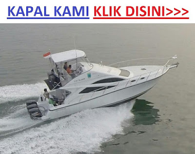 kapal cepat speedboat