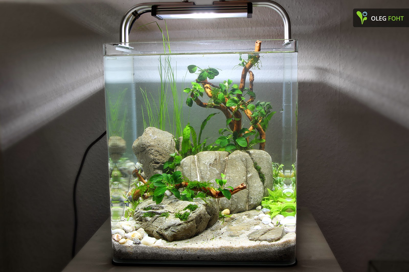 faszination aquascaping 30 liter nano aquarium. Black Bedroom Furniture Sets. Home Design Ideas