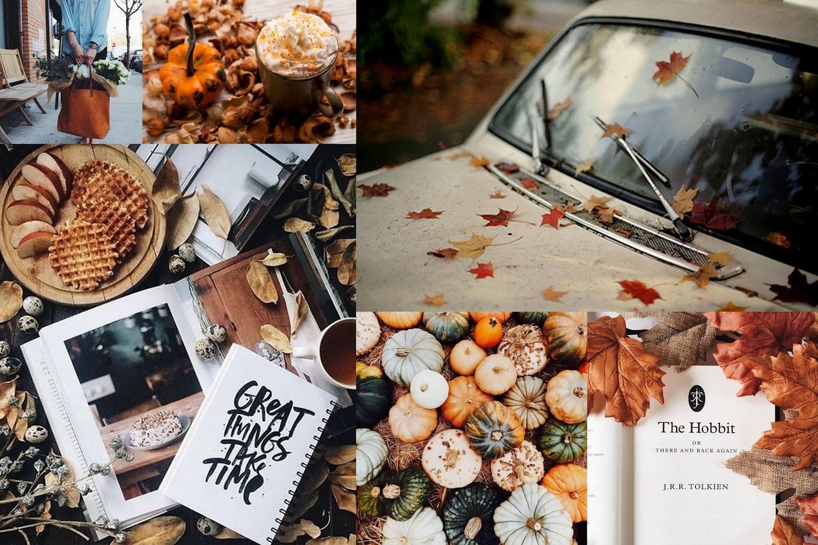 Autumn 2 / Inspirations