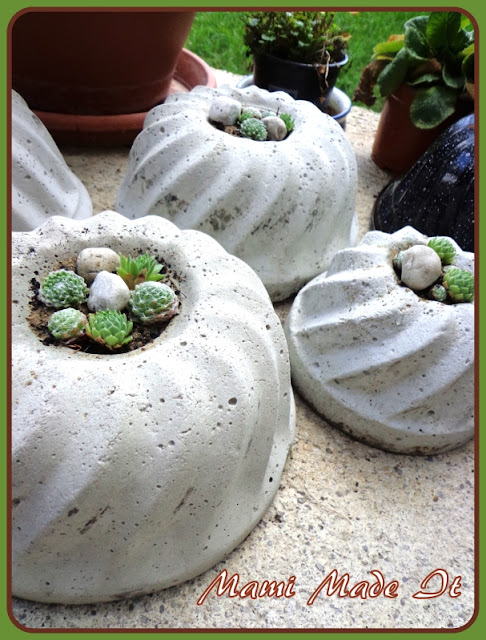 Bepflanzte Betonkuchen - Planted Concrete Cakes