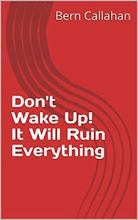 Don't Wake Up! It Will Ruin Everything - an essential book for mindfulness practice by Bern Callahan
