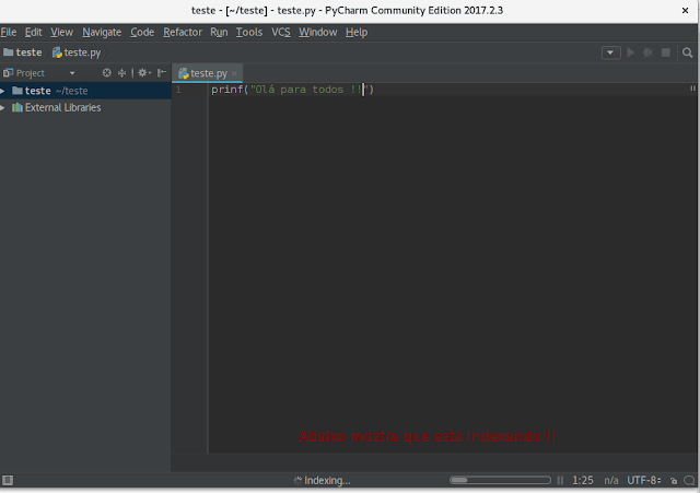 PyCharm Indexando