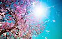 L'Amour n'a pas d'âge pour s'emparer de Sa Beauté de Sa Clarté, Il est dans l'air comme Un Doux Parfum qui se dépose sur un cœur cherchant Sa Senteur. Ainsi de son Royaume L'Odeur se fait sentir de sa vision en Soi.