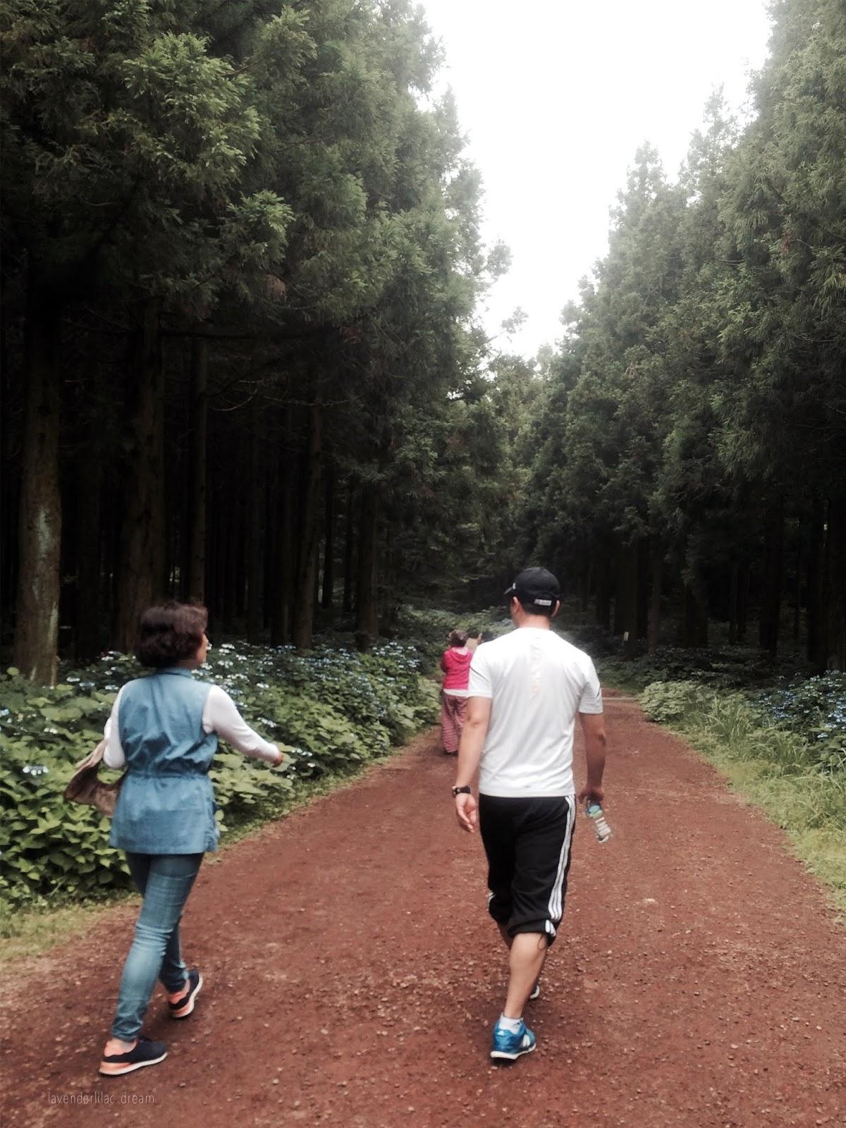 South Korea, Jeju Island, Yonsei University, YISS 2014, Saryeoni Forest