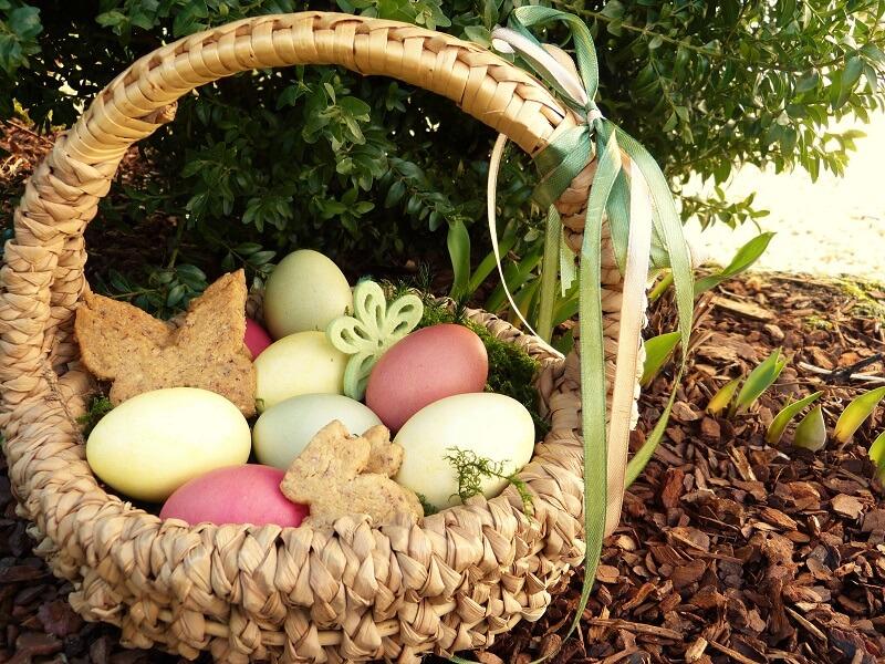 Adventures Of A Yorkshire Mum Garden Easter Egg Hunt Ideas For The Family