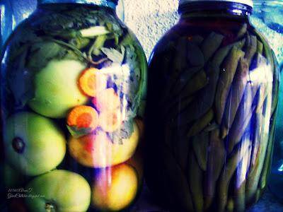 Romanian pickles (murături): green tomatoes (gogonele), celery (țelină) & carrots (morcovi); also, a jar of pickled hot peppers (ardei iute) in autumn , 2016
