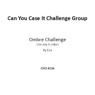 Can You Case It Challenge Group