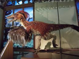 ricerca sui dinosauri