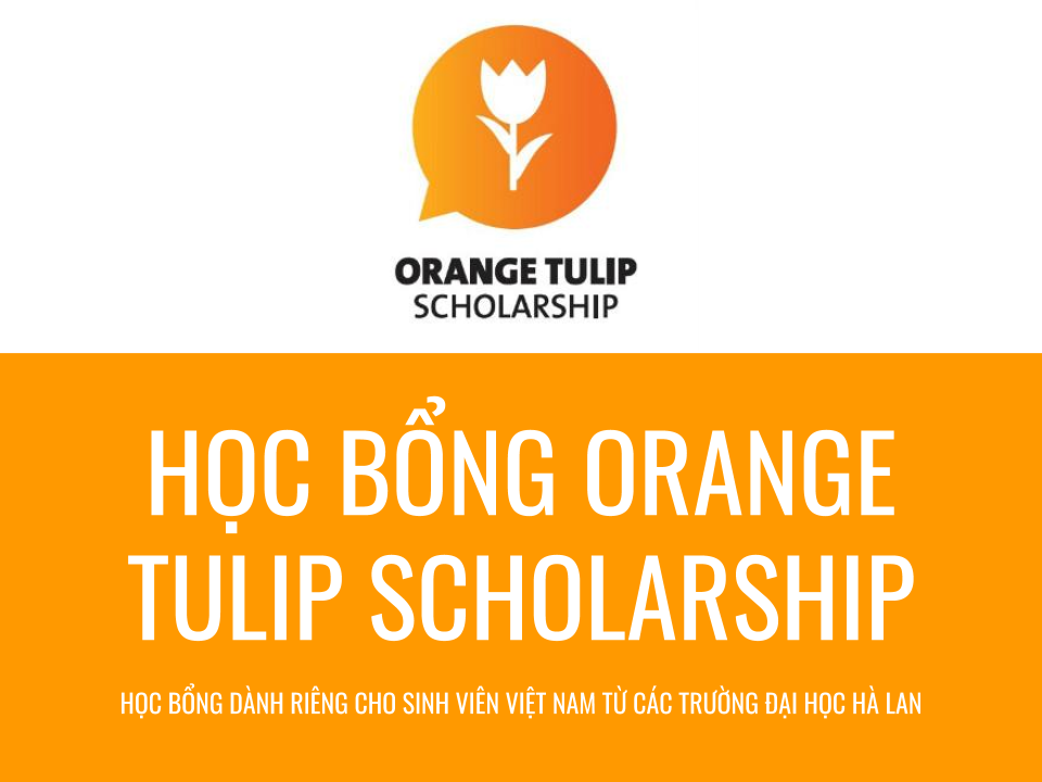 Học bổng Orange Tulip Scholarship