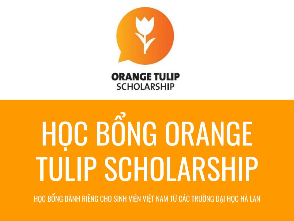Học bổng Orange Tulip Scholarship 2019