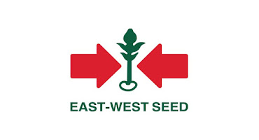 Lowongan Kerja PT East West Seed Indonesia
