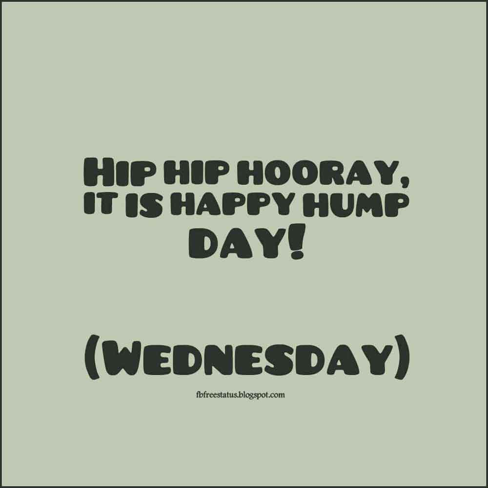 Hip hip hooray, it is happy hump day! (Wednesday)