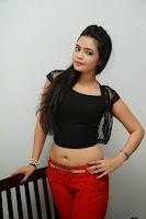 HeyAndhra Actress Merina Hot Photo Shoot HeyAndhra.com