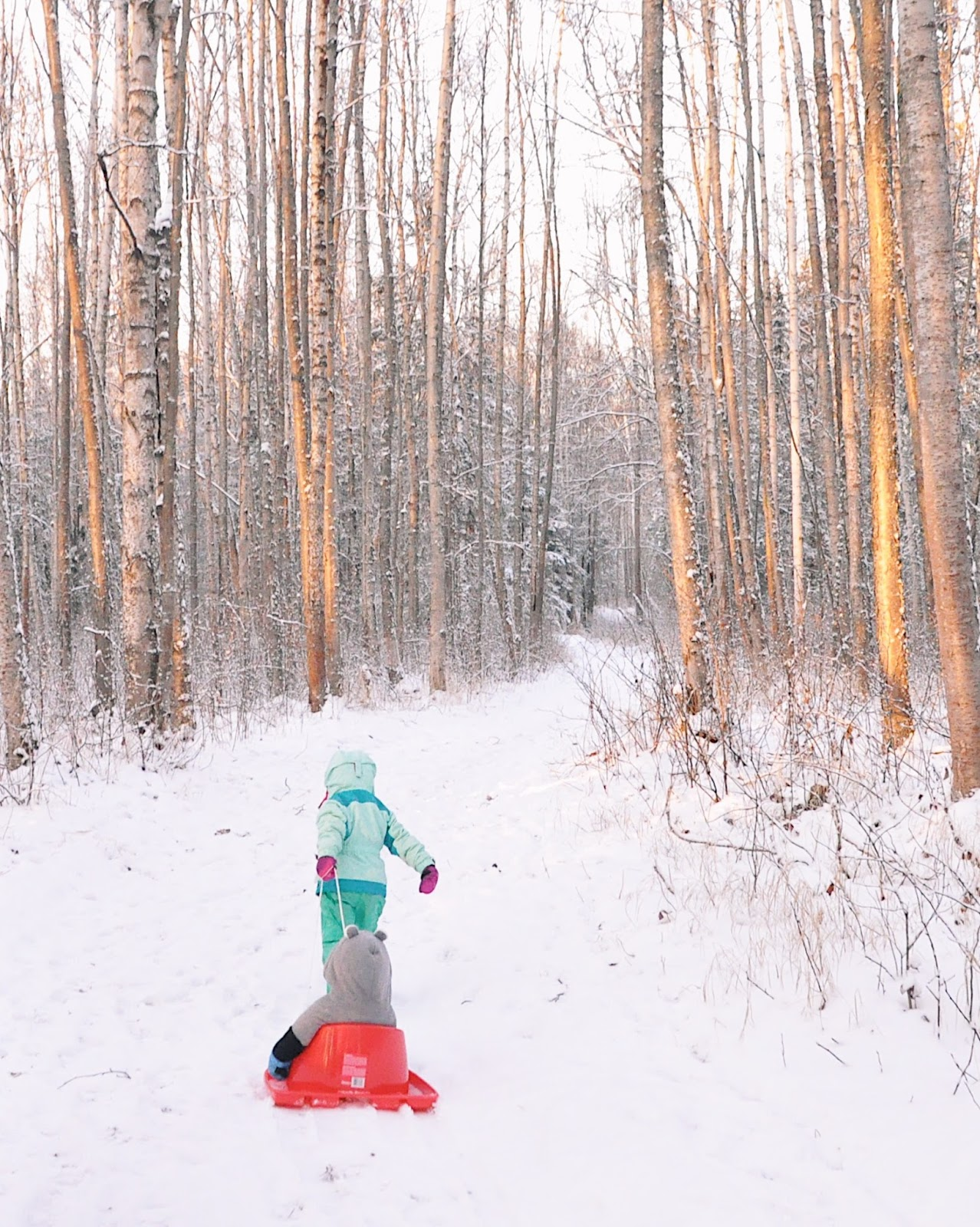 hiking with kids winter sledding