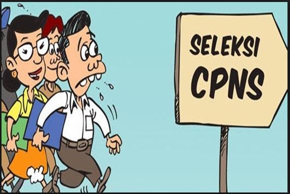 Pemerintah Buka Lowongan CPNS Jalur Khusus untuk Guru, Dokter, Bidan, dan Hakim