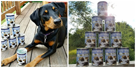 Satisfy Your Dog's Craving for a Taste of The Wild #ChewyInfluencer