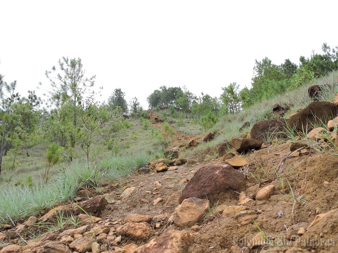 camino para subir al cerro quitasol en piedras y tierra