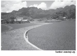 Kegiatan Pertanian Yang Dikembangkan Di Indonesia